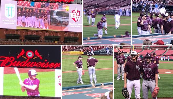Baseball-Busch-8